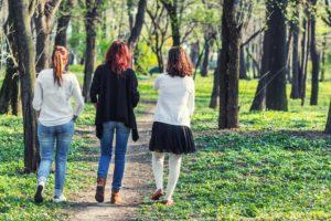 Drei Frauen gehen in einem Wald spazieren