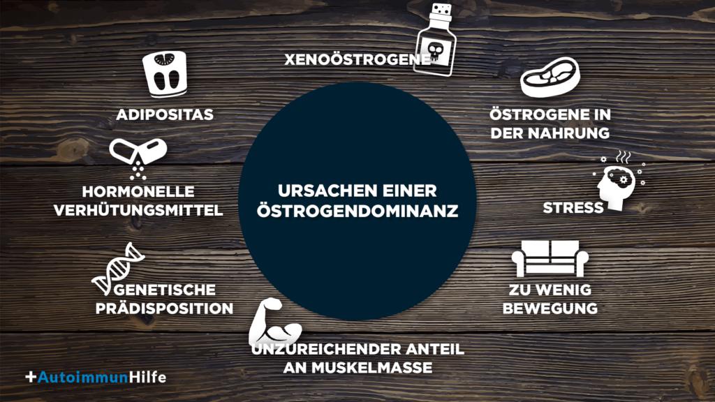 Ursachen einer Oestrogendominanz: Xenooestrogene, Oestrogene in der Nahrung, Stress, zu wenig Bewegung, unzureichender Anteil an Muskelmasse, genetische Prädisposition, hormonelle Verhütungsmittel, Adipositas